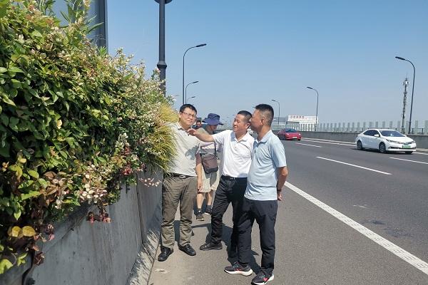 图1 相关人员参观垒土技术在杭州萧山机场高速的应用.jpg